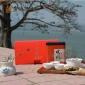 散茶送礼盒装乌龙茶凤凰单枞茶乌岽银花香乌龙茶凤凰鸭屎香